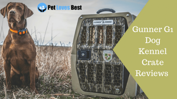 Featured Image Gunner G1 Dog Kennel Crate Reviews