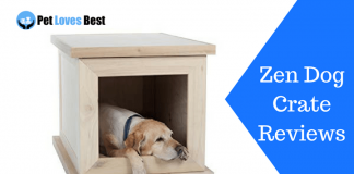 Featured Image Zen Dog Crate Reviews