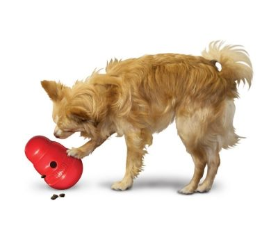 Treat Dispensing Dog Toy Kong