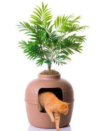 Potted Plant hidden litter box