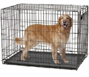 medium sized dog crate