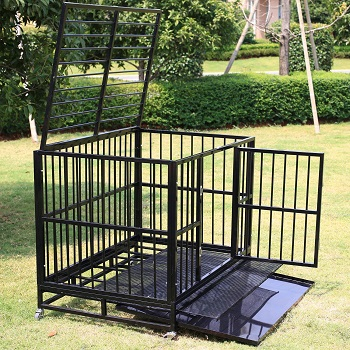 petco dog crate