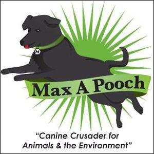 max a pooch