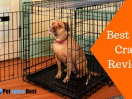 Featured Image Best Dog Crate Reviews