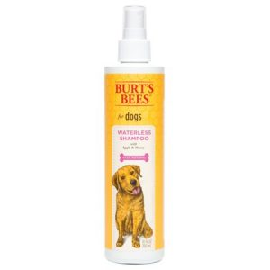 Burt's Bees Waterless Shampoo with Apple & Honey for Dogs