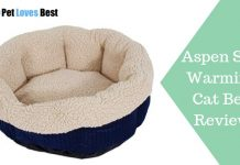 Featured Image Aspen Self Warming Cat Bed Review