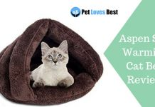 Aspen Self Warming Cat Bed Review