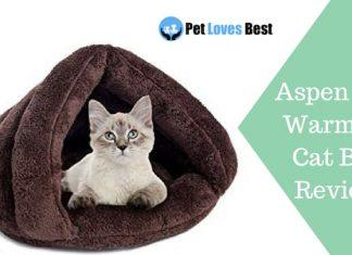 Aspen Self Warming Cat Bed Review