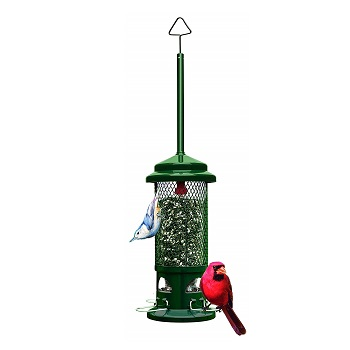 Squirrel Buster Standard Wild Bird Feeder With 4 Metal Perches
