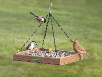 bird feeder hangers