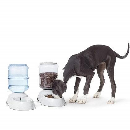 AmazonBasics Pet Feeder and Water Drinker Bundle