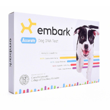 Embark Dog DNA Test Kit