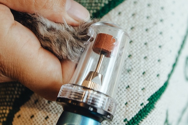 What is a Pet Nail Grinder