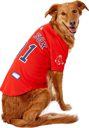 Pet first MLB t shirt