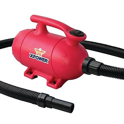 XPOWER B 2 Pro at home pet dryer and vacuum