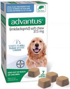 Flea and Tick Pills for Dogs
