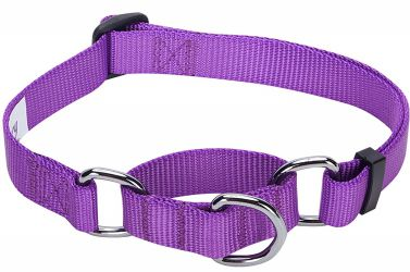 Blueberry Pet Classic Martingale Dog Collar