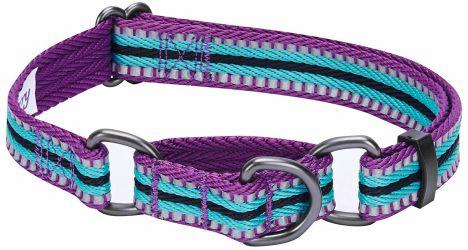 Blueberry Pet Multi-Colored Stripe - 3M Reflective