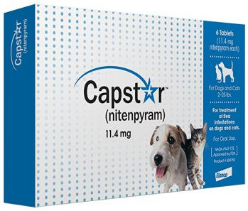 dog flea pills