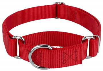 Country Brook Design Martingale Nylon Dog Collar