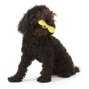 Zogoflex Hurley Aggressive Chewers Dog Bone