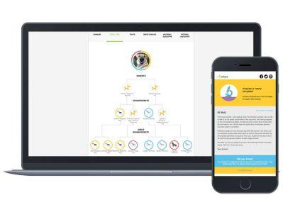 embark app