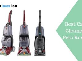 Featured Image Best Carpet Cleaner for Pets Reviews and Buyers' Guide