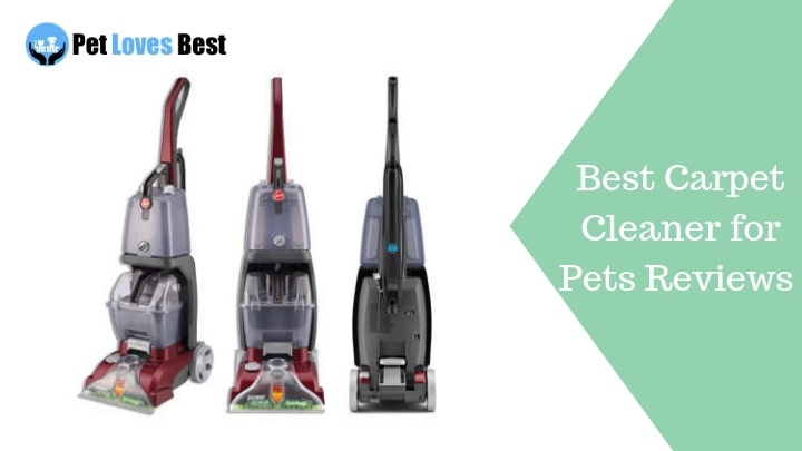 Best Carpet Cleaner for Pets Reviews