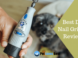 Featured Image Best Dog Nail Grinder Reviews