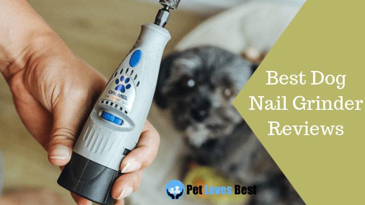 best dog nail grinder reviews of 2018 | for small/large dogs