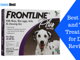 Featured Image Best Flea and Tick Treatment for Dogs Reviews