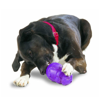 PetSafe Busy Buddy Squirrel Dude Dog Toy
