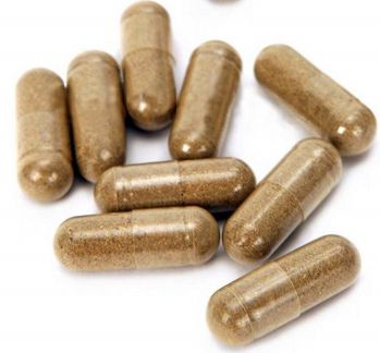 oral flea pills for dogs