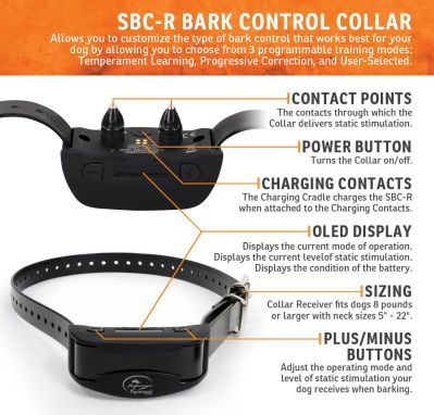 SportDog Anti Bark Collar for Dogs