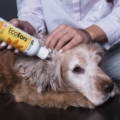 How To Use an EcoEars Dog Ear Cleaner