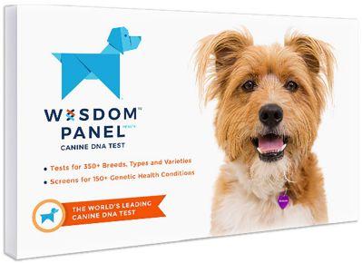 royal canin genetic health analysis