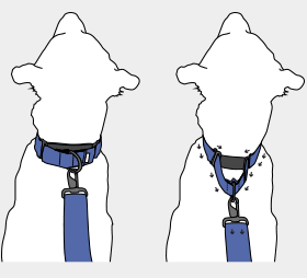 best martingale collars
