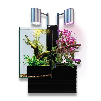 Aquaponics Brio 35 Self Cleaning Fish Tank