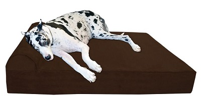 Big Barker Orthopedic Bed