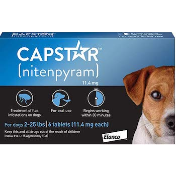 Best flea treatment pills for small dogs