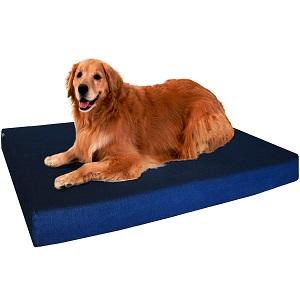 Dogbed4less Orthopedic Gel Memory Foam Dog Bed