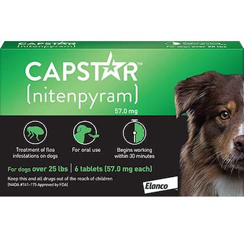 Oral Flea Treatment for Large Dogs