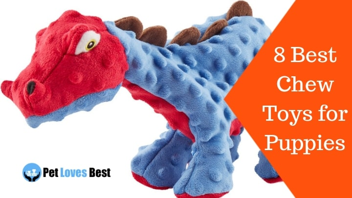 Featured Image 8 Best Chew Toys for Puppies