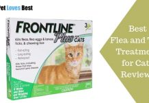 Featured Image Best Flea and Tick Treatment for Cats Reviews