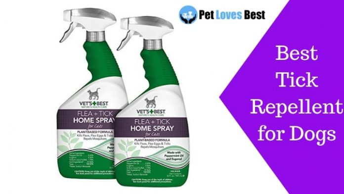 Featured Image Best Tick Repellent for Dogs