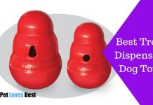 Featured Image Best Treat Dispensing Dog Toys