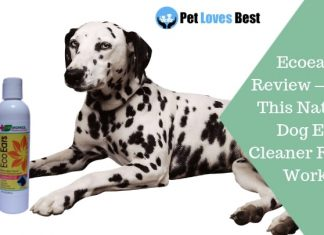 Featured Image Ecoears Review – Does This Natural Dog Ear Cleaner Really Work?