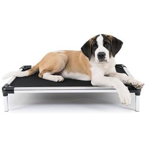 K9 Ballistics Durable Chew Resistant Raised Dog Bed