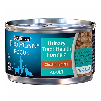 Cat Food For Cats Having Urinary Tract Problems