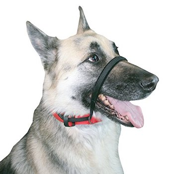 SPORN Head No Pull Dog Training Collar